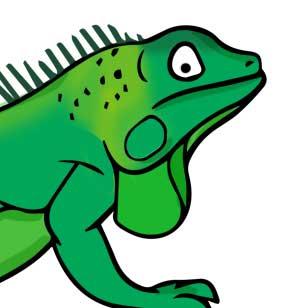 Iguana News